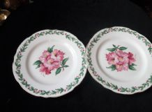 2 X VINTAGE ELEGANT GILDED SIDE PLATES GLADSTONE CHINA LAUREL TIME HIBISCUS